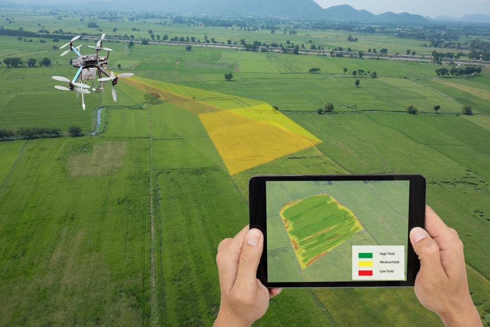 Will IoT Revolutionize Agriculture in Europe?